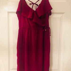 American Eagle Outfitters Fushia dress